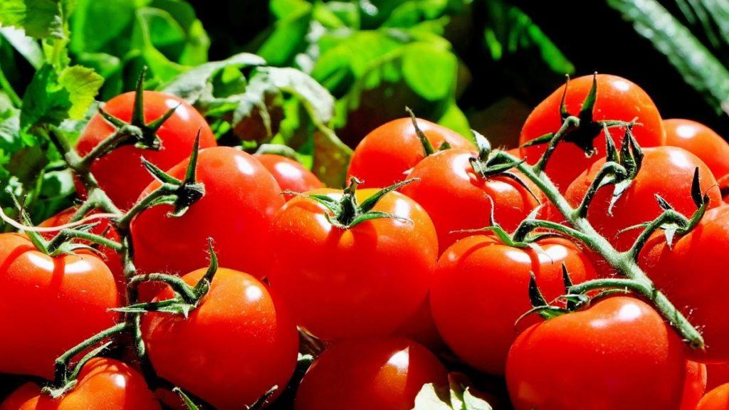 Cinco alimentos recomendados para fortalecer la piel antes del verano
