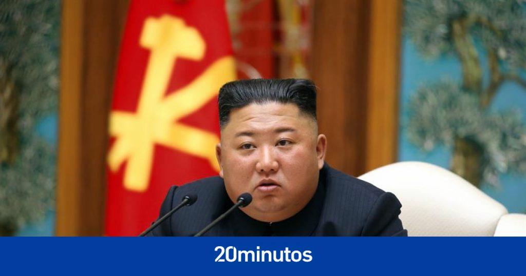 Kim Jong-un ordena eliminar palomas y gatos en Corea del Norte para detener a Covid