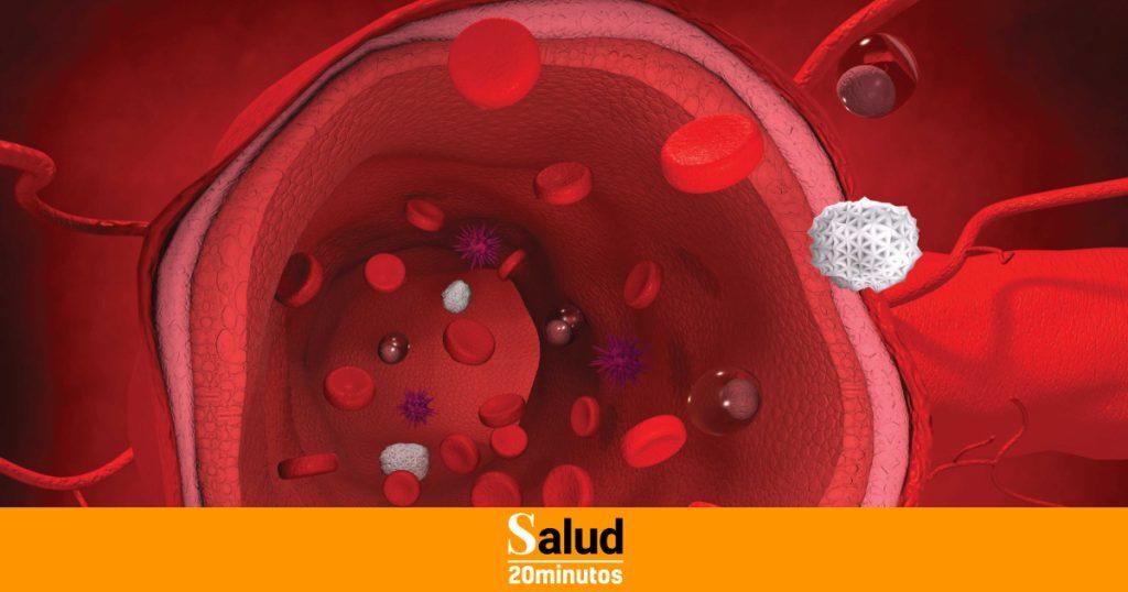 Así es como se crean las arterias de laboratorio para tratar a los pacientes y probar medicamentos.