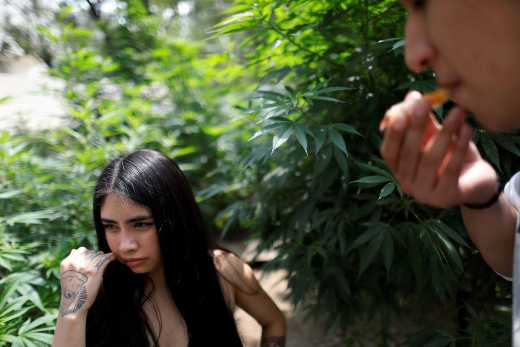 DromoFest, el festival virtual que busca debatir la legalización de las drogas sin demonizarlas