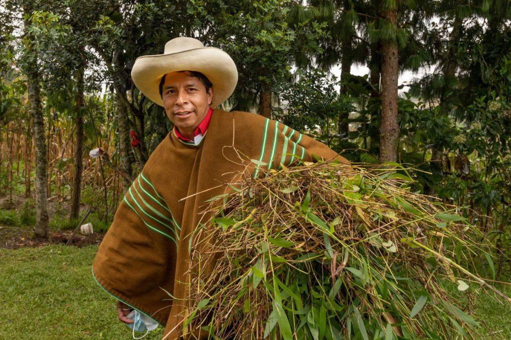 Elecciones Perú 2021: Pedro Castillo, el candidato descalzo    Internacional