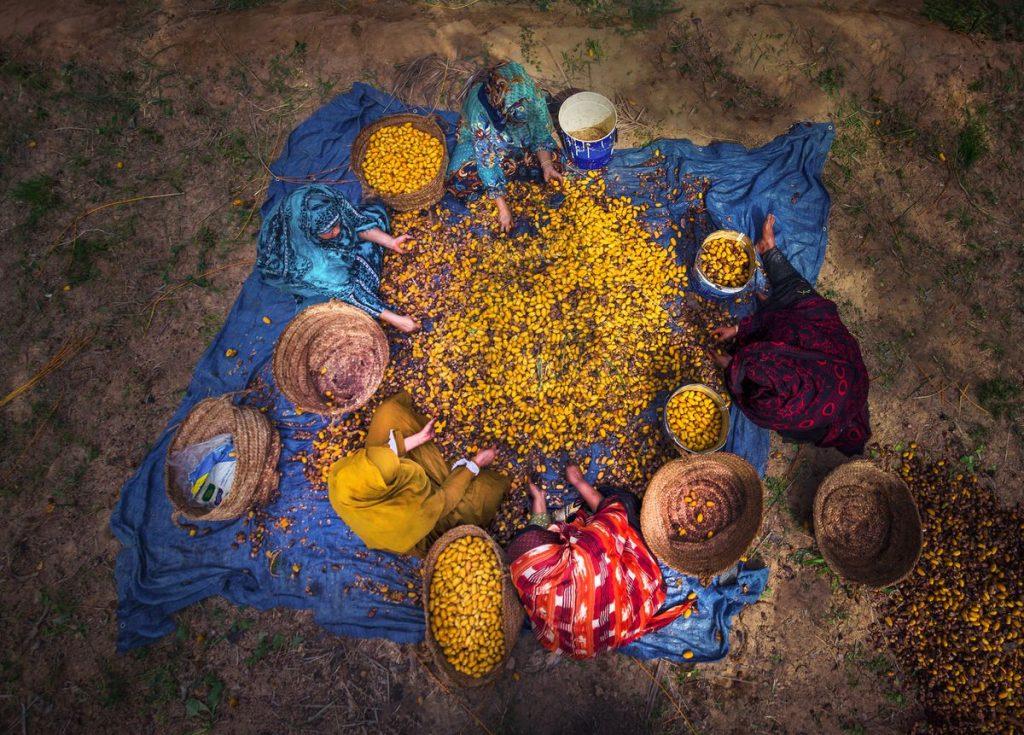 ONU: Próximos pasos después de la Cumbre sobre sistemas alimentarios    Red de expertos    Planeta futuro